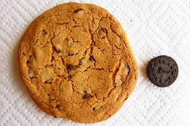 The 600 Calorie Cookie