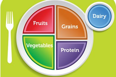 MyPlate vs. Harvard Pyramid