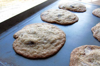 Whole Wheat Chocolate Chip Cookie